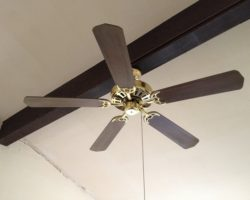 Ceiling Fan Gallery Air Cool